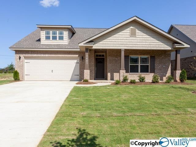 209 Holt Street, Meridianville, AL 35759 (MLS #1123400) :: Capstone Realty