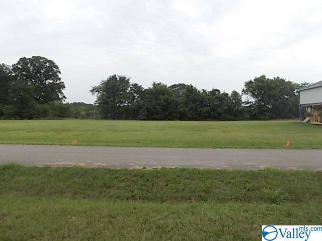 lot 10 Bay Village Drive, Athens, AL 35611 (MLS #1123631) :: Amanda Howard Sotheby's International Realty