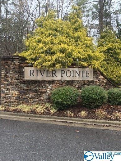 60 River Pointe Drive, Guntersville, AL 35976 (MLS #1123746) :: RE/MAX Distinctive | Lowrey Team