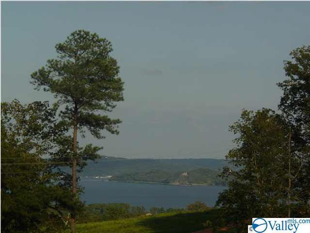 26 Legendary Drive, Guntersville, AL 35976 (MLS #1123970) :: Legend Realty