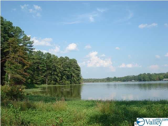 Lot 6 Armstrong Road, Cedar Bluff, AL 35959 (MLS #1124355) :: RE/MAX Distinctive | Lowrey Team