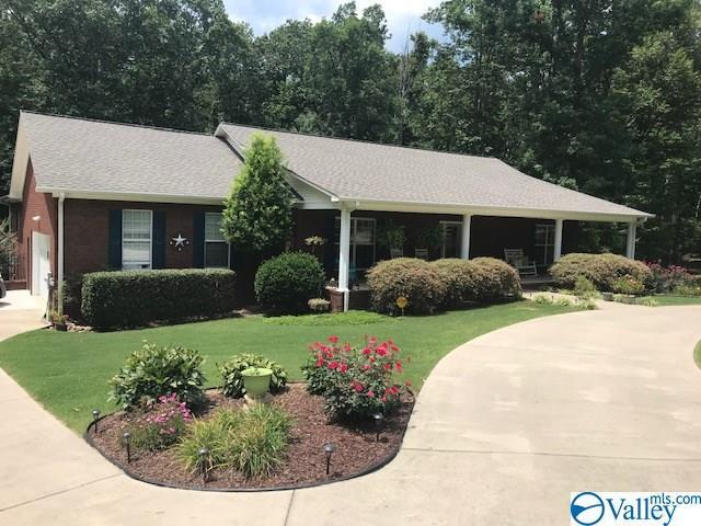 185 Bella Vista Drive, Scottsboro, AL 35763 (MLS #1124684) :: Capstone Realty
