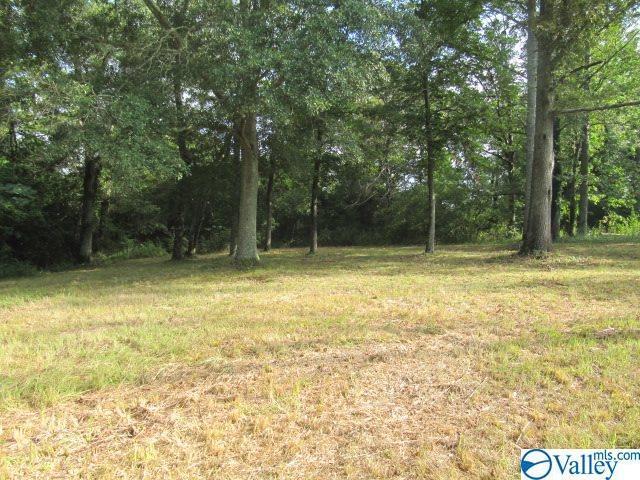 Rice Mill Chavers Road, Albertville, AL 35951 (MLS #1125267) :: Intero Real Estate Services Huntsville