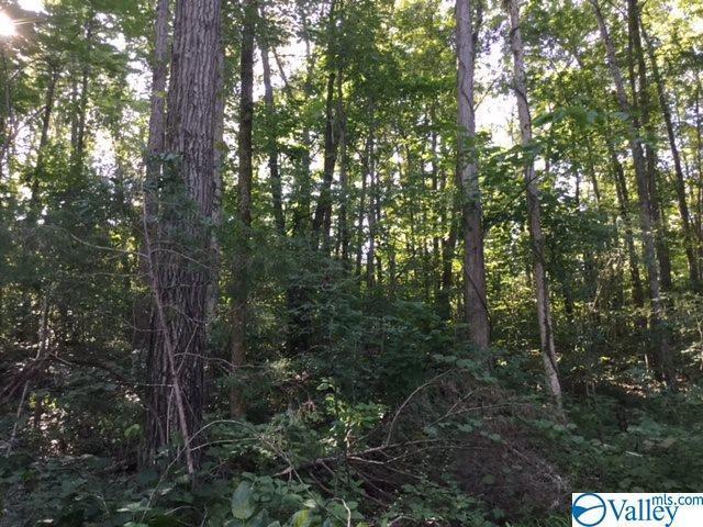 0 Piney Grove Road, Falkville, AL 35622 (MLS #1125355) :: Capstone Realty