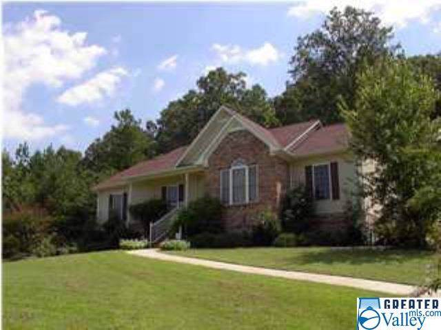 45 Carriage Drive, Ashville, AL 35953 (MLS #1127988) :: Capstone Realty
