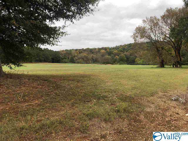 4 Carlton Road, Scottsboro, AL 35769 (MLS #1127997) :: Legend Realty
