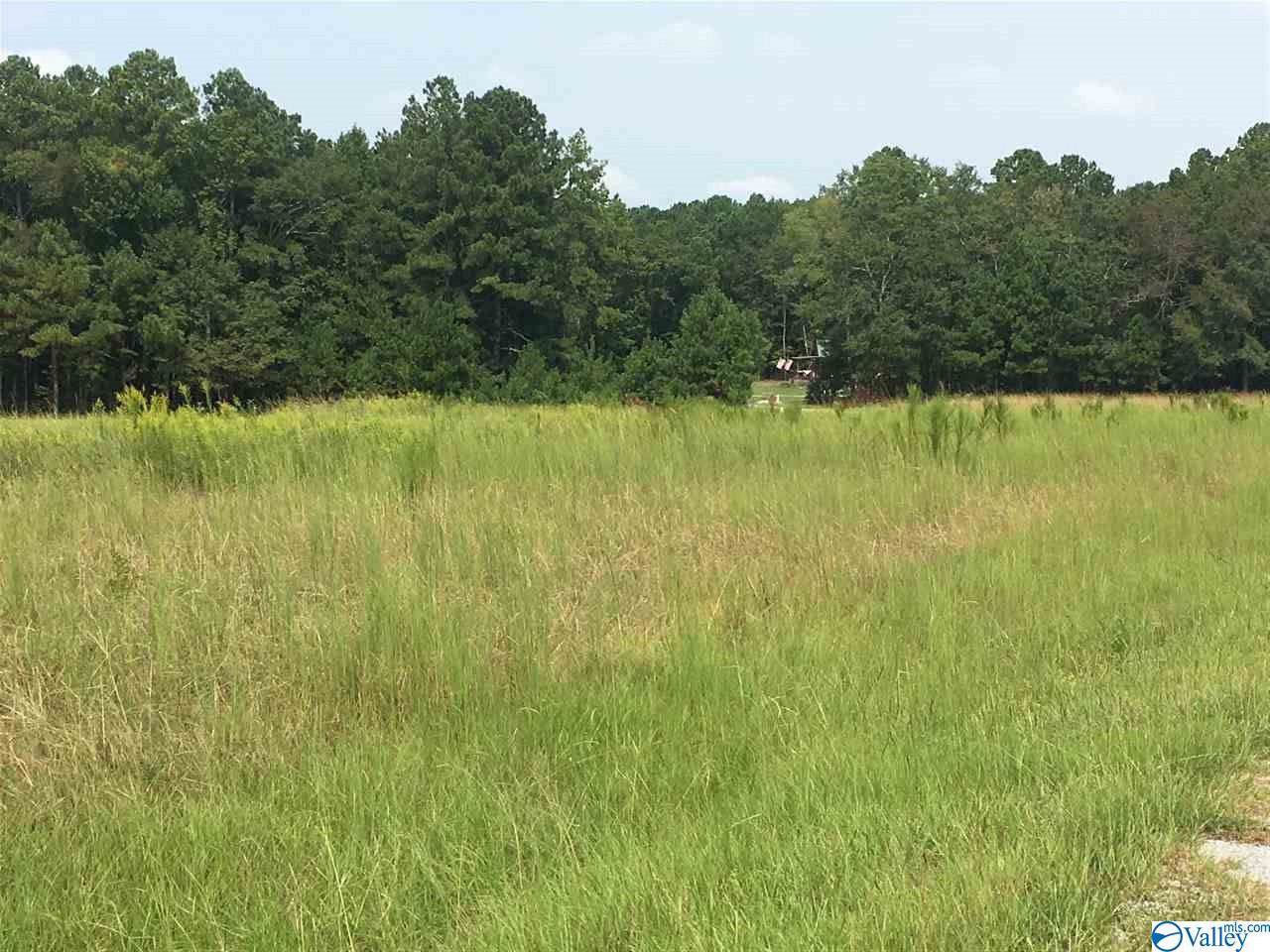 Lot 16 County Road 580 - Photo 1