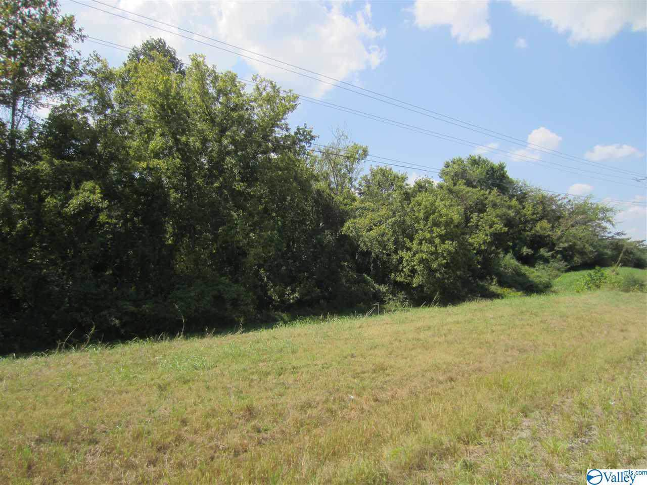 00 Winchester Hwy - Photo 1