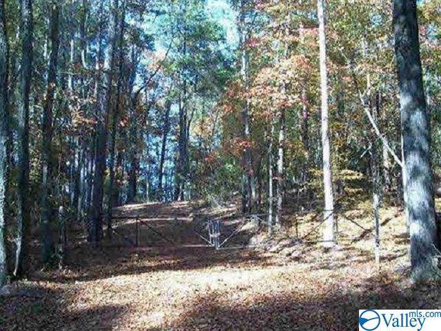 County Road 730, Cedar Bluff, AL 35959 (MLS #1128862) :: Intero Real Estate Services Huntsville