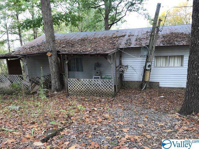 824 Shin Point Road, New Hope, AL 35760 (MLS #1130472) :: RE/MAX Distinctive | Lowrey Team