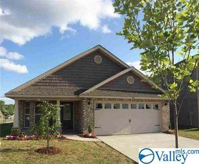 102 Tybee Drive, Madison, AL 35756 (MLS #1131130) :: Intero Real Estate Services Huntsville