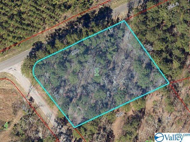 000 County Road 732, Cedar Bluff, AL 35959 (MLS #1131931) :: Weiss Lake Alabama Real Estate