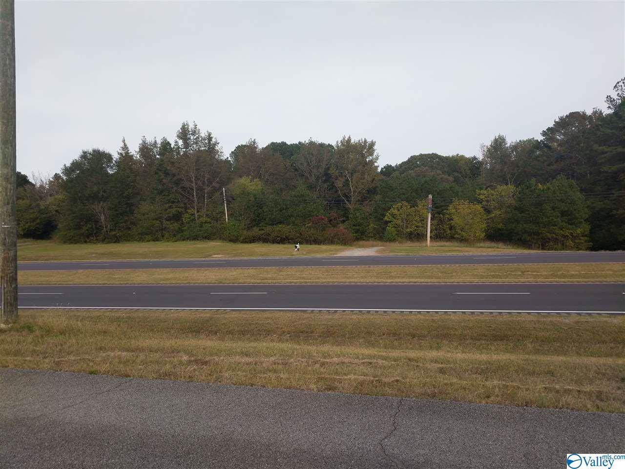 10400 Highway 431 - Photo 1