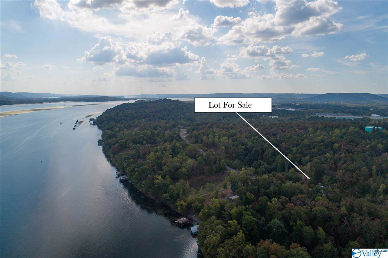 Lot 161 & 162 Lookout Mountain Drive - Photo 1