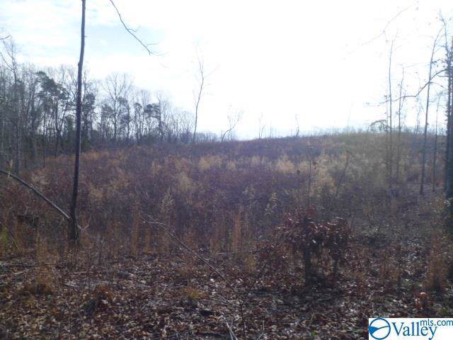 Lot 2 Long Hollow Circle, Fort Payne, AL 35968 (MLS #1134557) :: Revolved Realty Madison