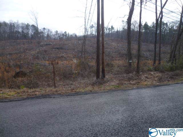 Lot 9 County Road 88, Fort Payne, AL 35968 (MLS #1134561) :: Revolved Realty Madison