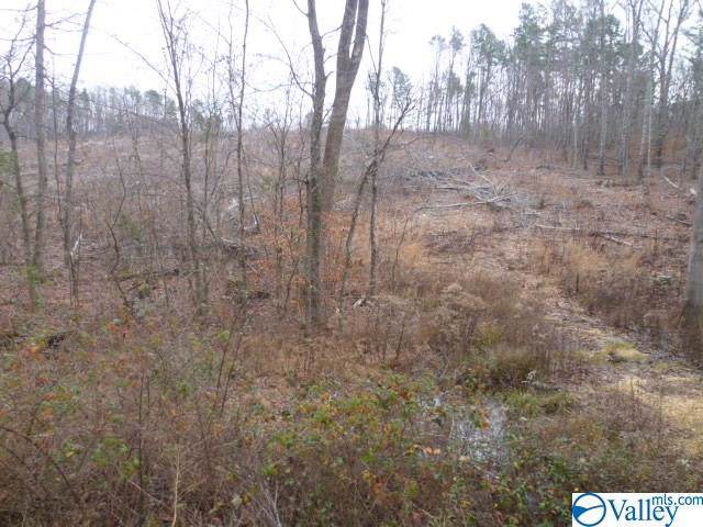Lot 10 County Road 88, Fort Payne, AL 35968 (MLS #1134562) :: Revolved Realty Madison