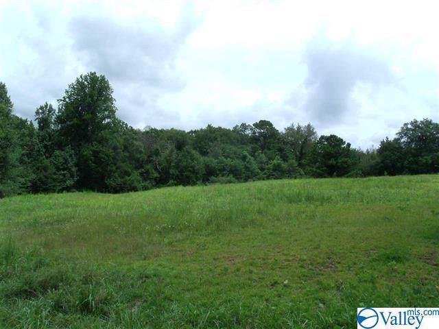 81 ACRES Old Mill Road, Blountsville, AL 35031 (MLS #1134679) :: Amanda Howard Sotheby's International Realty