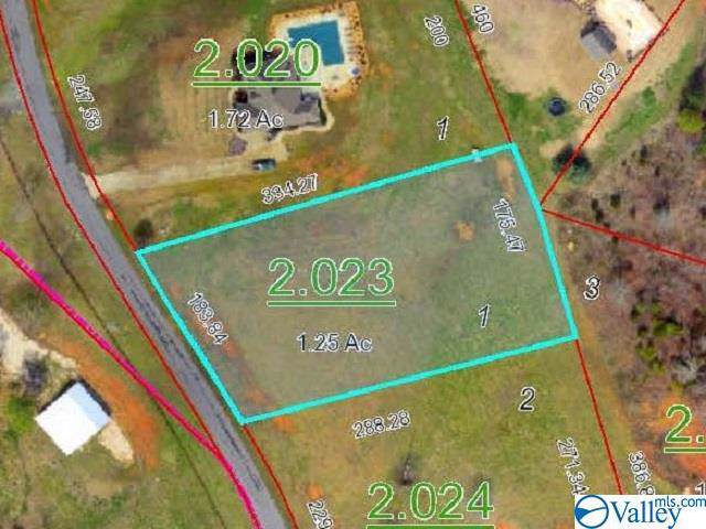 000 County Road 606, Valley Head, AL 35989 (MLS #1135241) :: Legend Realty
