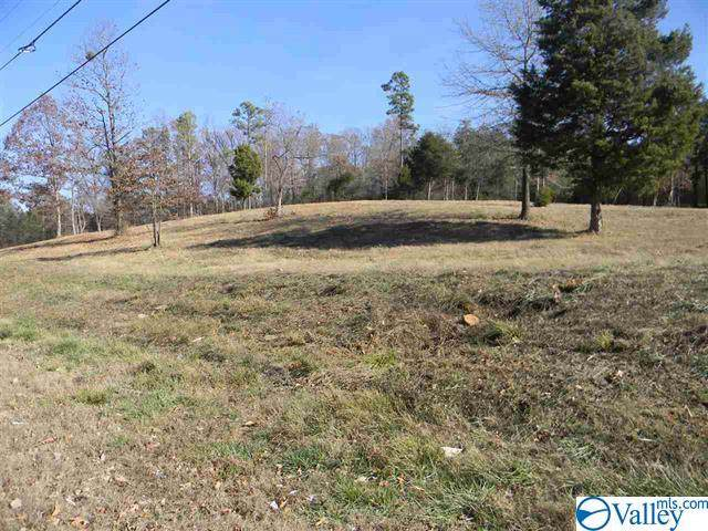 0 Center Springs Road, Somerville, AL 35670 (MLS #1135499) :: Capstone Realty