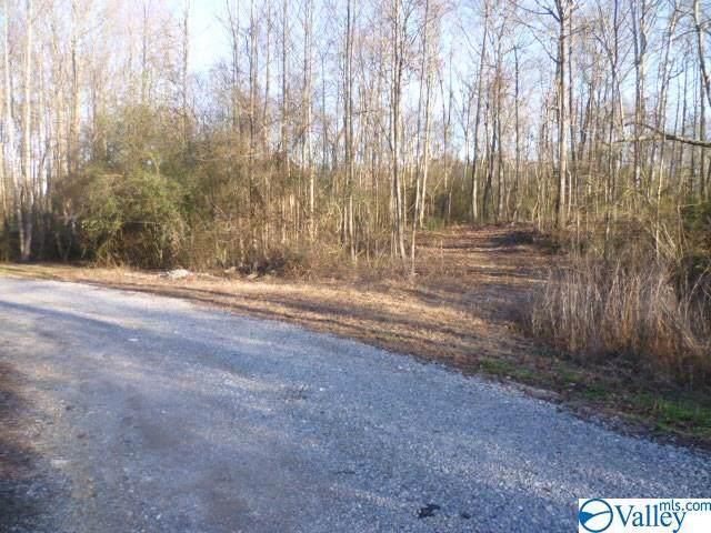 66 River Rock Drive, Sylvania, AL 35988 (MLS #1135552) :: Amanda Howard Sotheby's International Realty