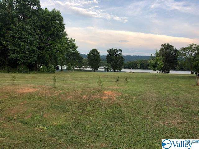 00 Drew Drive, Hollywood, AL 35752 (MLS #1135576) :: LocAL Realty