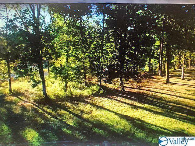 921 Riverside Drive, Gadsden, AL 35901 (MLS #1135854) :: Amanda Howard Sotheby's International Realty