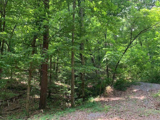 Owens Cross Roads, AL 35763 :: Capstone Realty