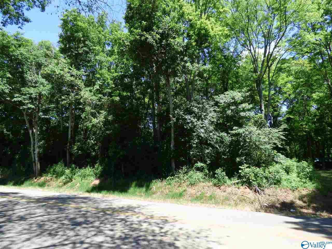 L14 County Road 91 - Photo 1