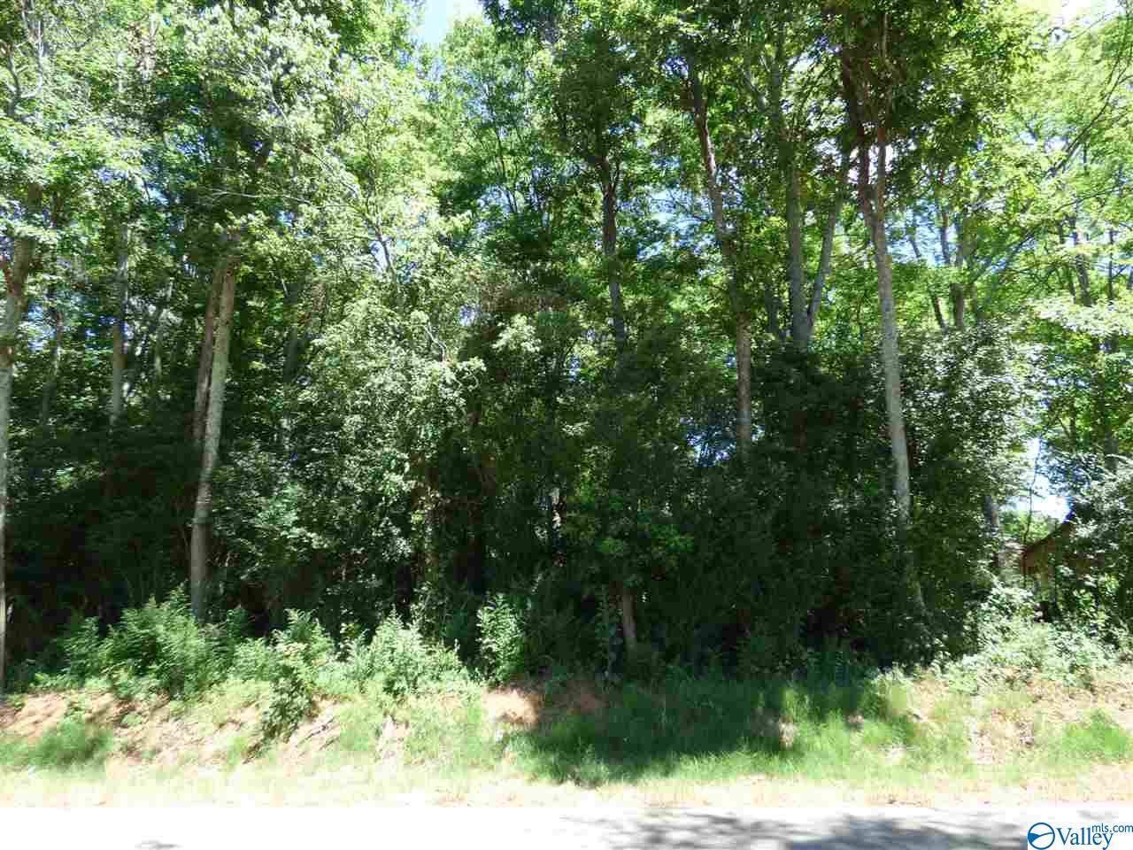L13 County Road 91 - Photo 1