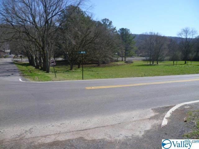 000 Highway 117, Valley Head, AL 35989 (MLS #1137805) :: Amanda Howard Sotheby's International Realty