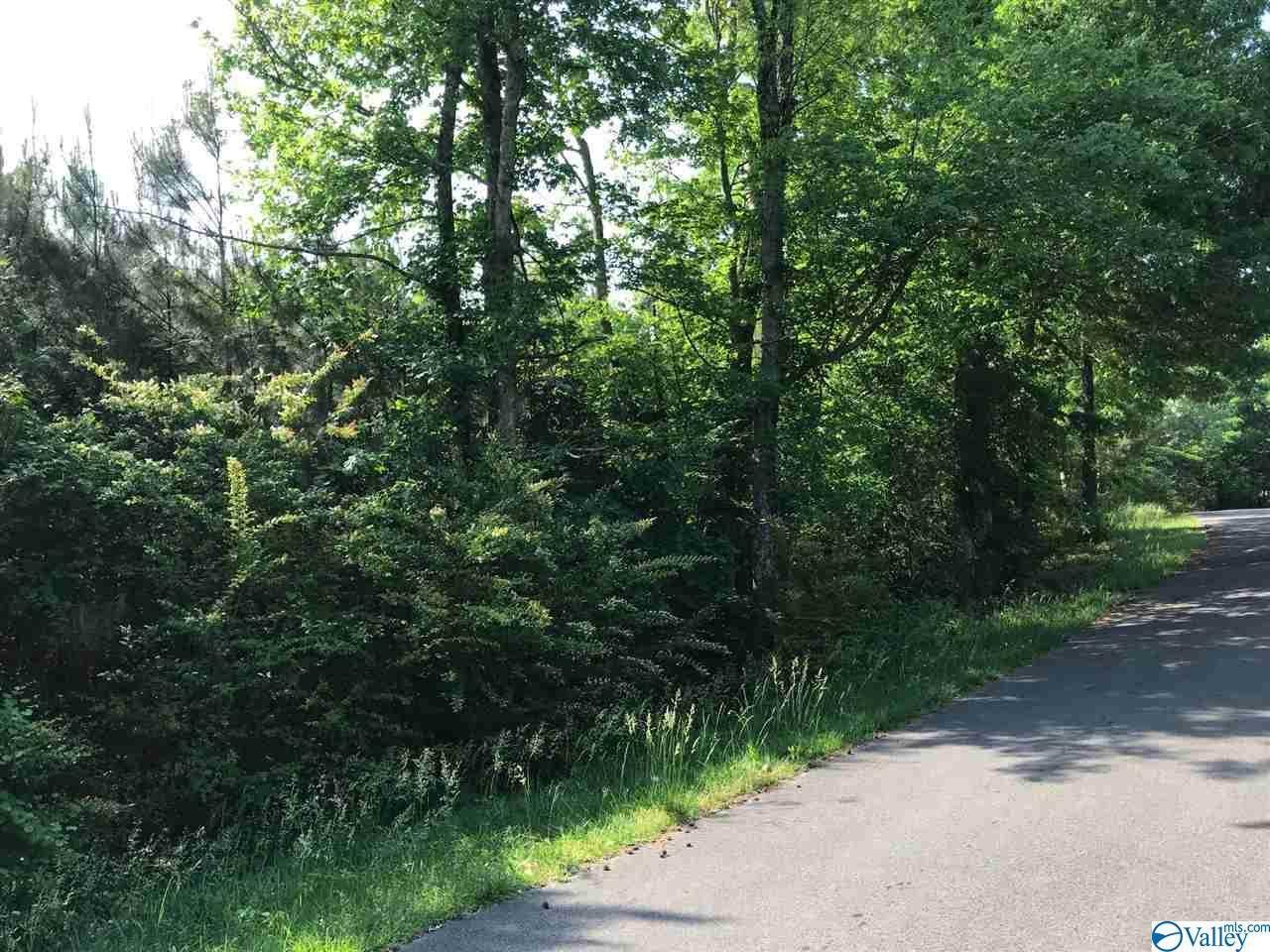 Dalewood Lane - Photo 1
