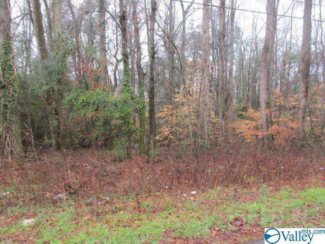 0 Western Lane, Southside, AL 35907 (MLS #1139195) :: Weiss Lake Alabama Real Estate