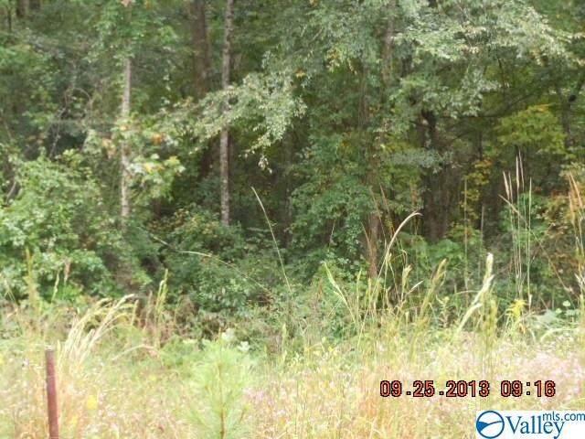 Township Road, Rainbow City, AL 35906 (MLS #1140387) :: Amanda Howard Sotheby's International Realty