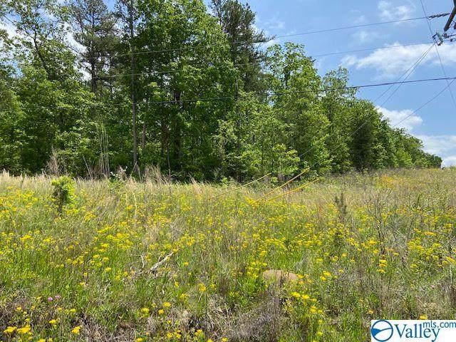 0 County Road 861, Gaylesville, AL 35973 (MLS #1143140) :: Capstone Realty