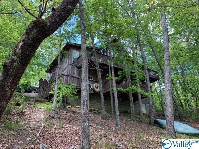 1328 Alabama Hwy 117, Mentone, AL 35984 (MLS #1143768) :: Capstone Realty