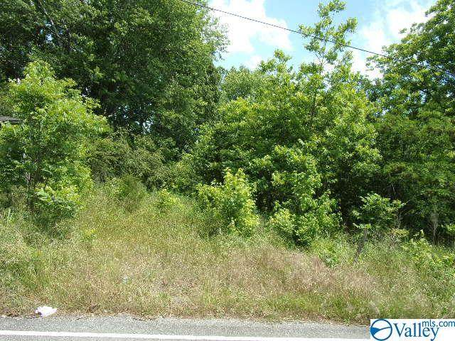 1 Old Railroad Bed Road, Taft, TN 38488 (MLS #1144922) :: Amanda Howard Sotheby's International Realty