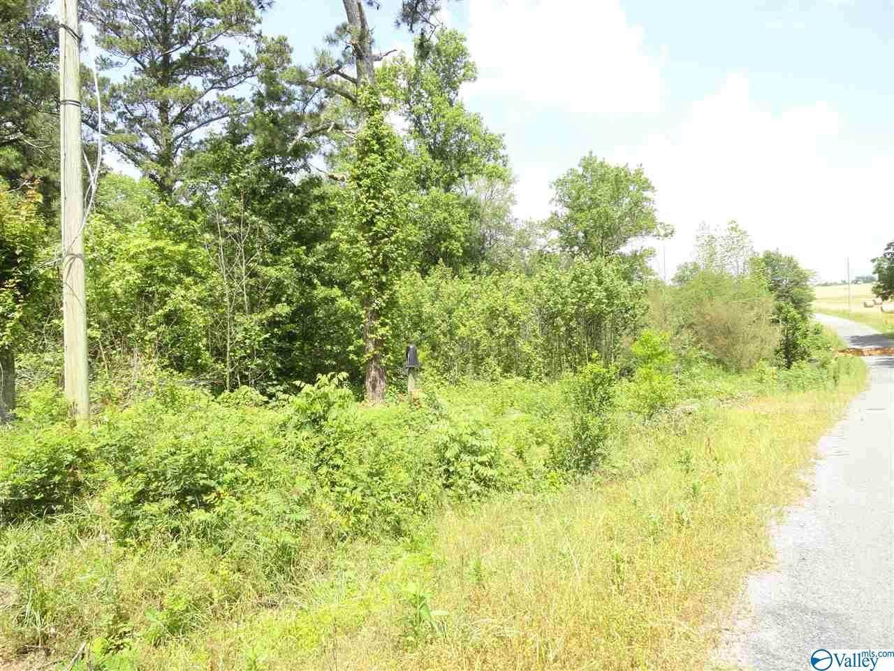 860 County Road 360 - Photo 1