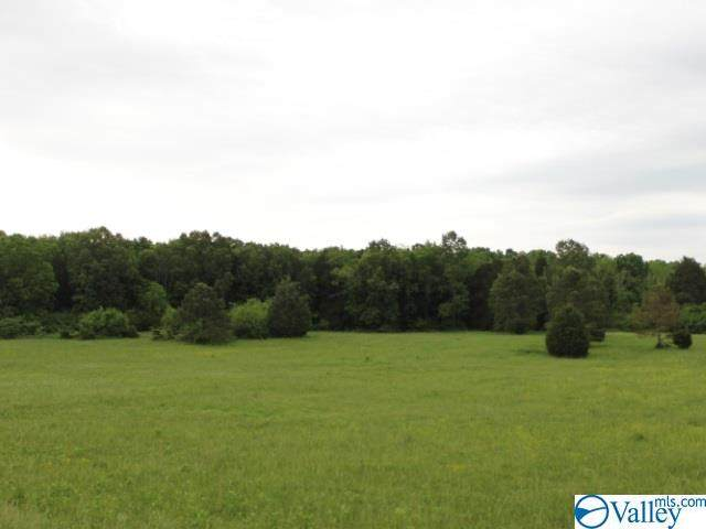 Lot #1 Red Bank Road - Photo 1