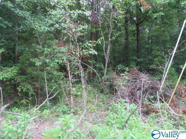 Tract C Deer Cove Road, Scottsboro, AL 35768 (MLS #1147683) :: Revolved Realty Madison