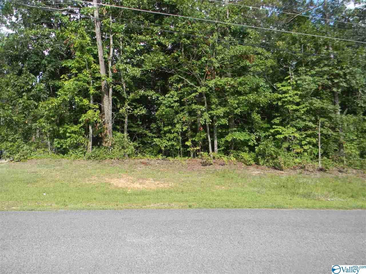 0 Vista Trail - Photo 1