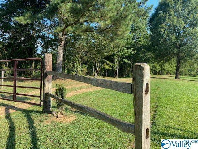 870 County Road 107, Gaylesville, AL 35973 (MLS #1149699) :: RE/MAX Distinctive | Lowrey Team