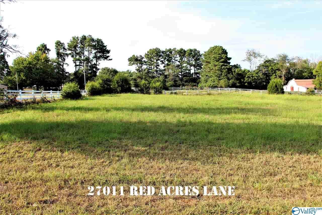 27011 Red Acres Lane - Photo 1