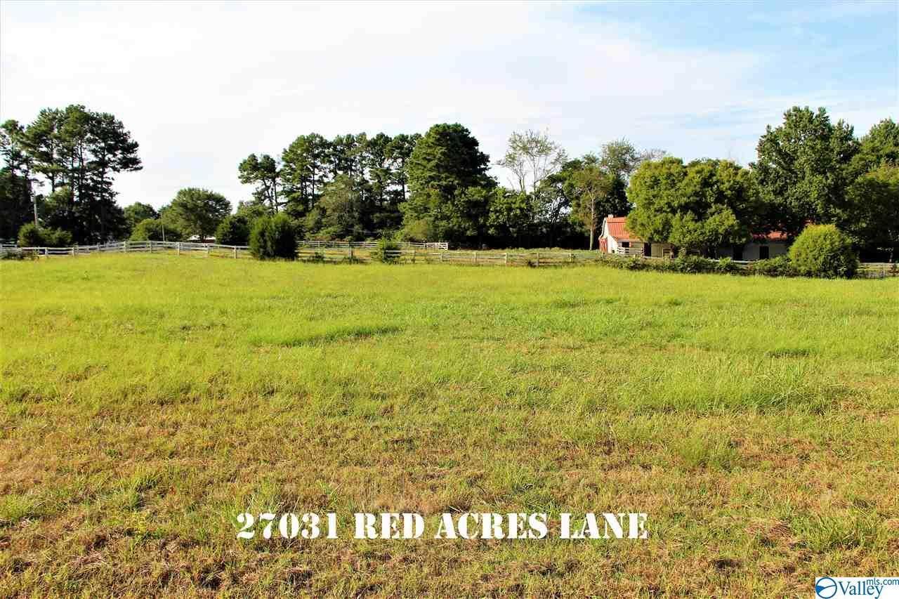 27031 Red Acres Lane - Photo 1
