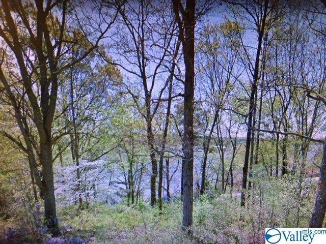 0 Lakeshore Drive, Southside, AL 35907 (MLS #1150671) :: RE/MAX Distinctive | Lowrey Team