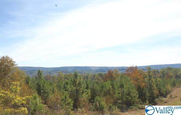 Lot 2 Hillside Drive, Fort Payne, AL 35967 (MLS #1151387) :: Southern Shade Realty