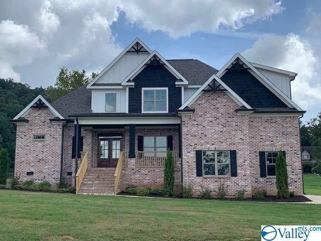 125 Lake Creek Drive, Guntersville, AL 35976 (MLS #1151570) :: The Pugh Group RE/MAX Alliance