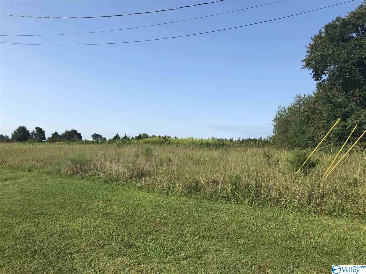 0 Lot 6 County Road 170 - Photo 1