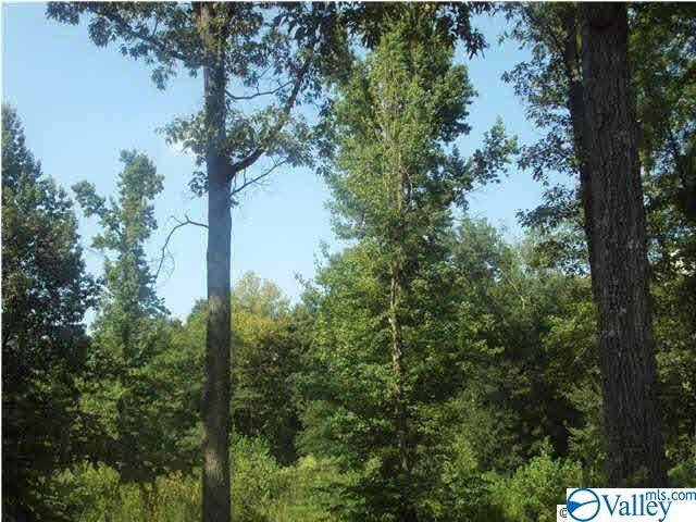 Lot 24 Jessica Drive, Toney, AL 35773 (MLS #1152900) :: Rebecca Lowrey Group