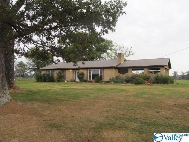 228 Stevenson Drive, Horton, AL 35980 (MLS #1153370) :: Legend Realty